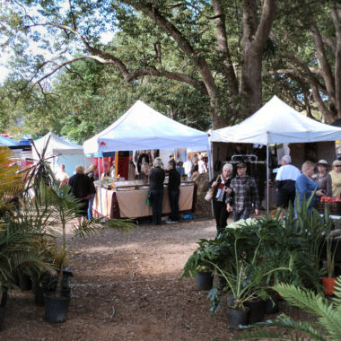 Bangalow Village Market 4th Sunday